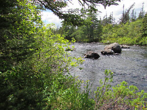 12 ACRE RIVERFRONT ESTATE…181 SALMONIER LINE, HOLYROOD. St. John's Newfoundland image 1