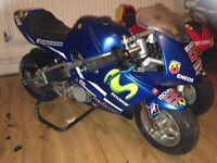Polini stamas mini moto not cheap rubbish