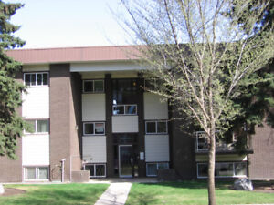Strathcona/Whyte Ave 1 Bedroom