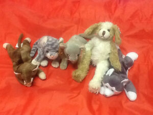 Lot of 37 TY beanie babies