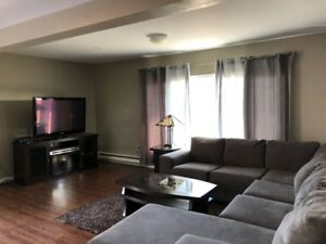 Executive style furnished house for rent