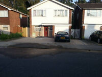 Room available in a newly refurbished detached house in Shenfield.