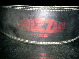 Grizzly 4 Inch Padded Weigh Belt