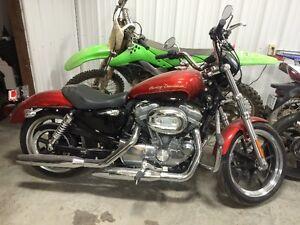 2013 Harley-Davidson Sportster 883 LOW KILOMETERS