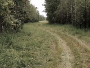 39+ Acres North of Glaslyn can be yours!