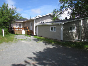 2.5 ACRE BOREAL FOREST ESTATE, PRIVACY GALORE...AVONDALE. St. John's Newfoundland image 8