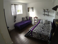 Fully furnished, 3 bedroom apartment for rent
