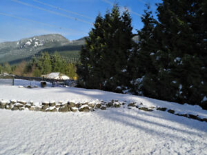 Renovated, Spacious, Mountain View walk-out basement