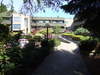 2 Bdrm / 2 Bth Apartment Avail. Oct 01.