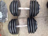 Huge Dumbbells 80kg total weight