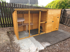Cat runs Catio various sizes available