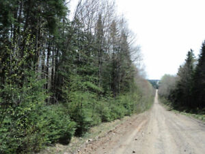 REDUCED....65 Acres Swamp Road