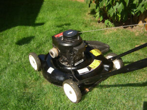 Yard Machine Push Mower - Nice Cut