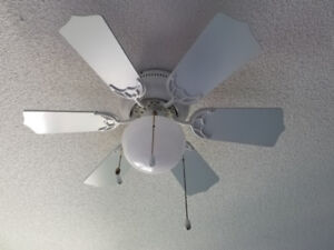 Ceiling Fan With Light Fixture for Sale