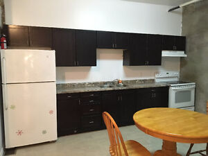 Bridgeport Lofts - Newly Renovated - Close to Laurier and UW Kitchener / Waterloo Kitchener Area image 5