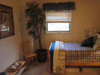 Furnished bedroom 10 min walk from UofW