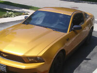 2010 Ford Mustang V6 Coupe (2 door) 4.0 L