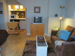 Bachelor Apartment in Basement of Quiet Homes-All Included