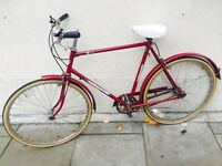 Single speed 3 speed Dutch bike lllcvgf