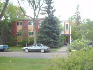 Whyte Ave/UofA Area  Dec.free rent