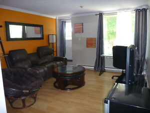 Furnished Condo on Forest Road (Near downtown)