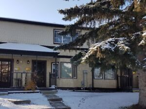 Great Price on a Newly Renovated Townhome in North Edmonton