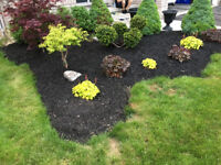 Lawncare and landscaping specialist