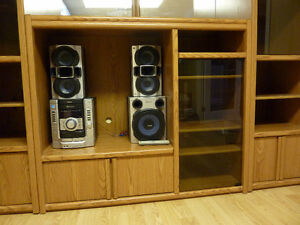 Wall/Entertainment  unit  with SonyStereo System