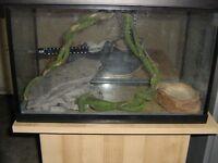 8g reptile terrarium with decorations