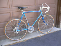 ROYAL KNIGHT ROAD BIKE