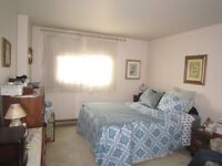 Female tenant wanted to share a wonderful apartment on Mar. 1