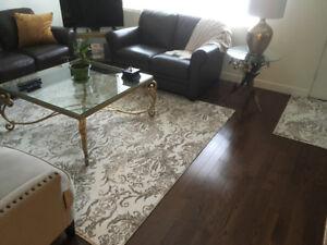 Sacrifice Sale!!!  $250.00 for Brand New, Beautiful Area Carpet