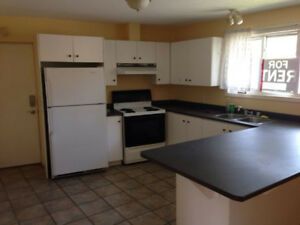 Renovated large 2 Bedroom Apt. near Nothriver Rd. and Rideau St.