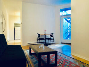 Great location! Furnished downtown 3-1/2 sublease - March 1st