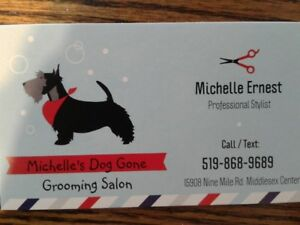 Michelle's Dog Gone Grooming Salon
