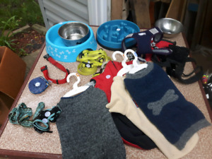 Assorted dog accessories