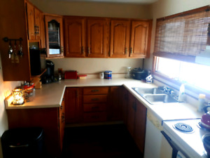 Lg 3 Bdrm Home with Mom-in-Law suite $1250