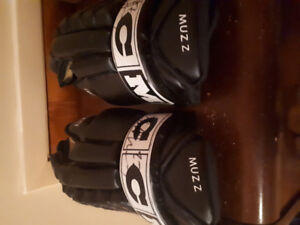 Glenn Murray Game Used Gloves with Auto