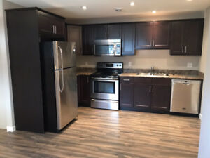 2 Bedroom Basement Suite for Rent in Harbour Landing