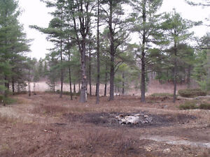 French River...(non-waterfront)...vacant lot end of paved road