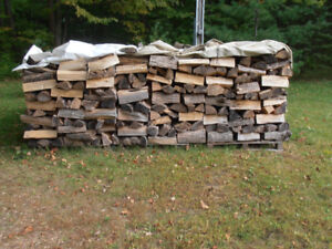 FIREWOOD, by CORD or CAMPFIRE portions!