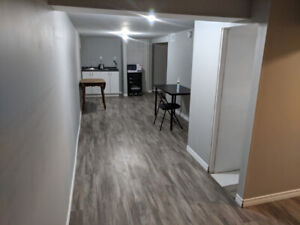 Stunning! Beautiful! Basement bachelor for rent in Downtown