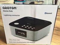 Radio Alarm Docking Station with Bluetooth