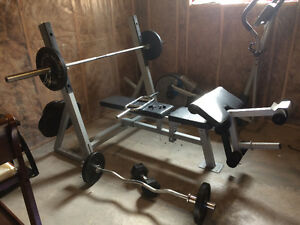 Heavy Duty Weight Bench with Weights Kingston Kingston Area image 1