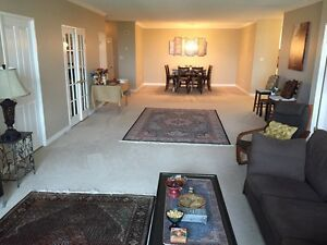 Spacious luxury 2+1 waterloo condo for rent - available Dec 28th Kitchener / Waterloo Kitchener Area image 2