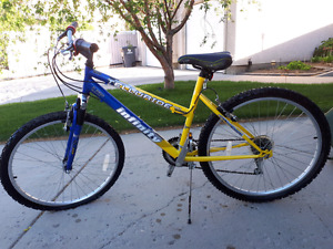 Ladies Mountain Bike / like new