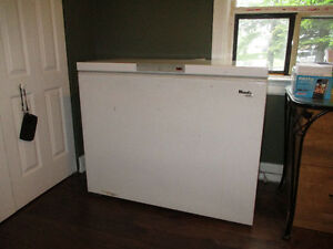 Wood's Freezer for sale