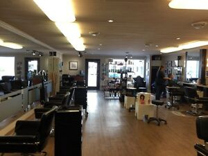 Rare 1057 s.f. Retail/Office Space in Popular  Downtown Plaza London Ontario image 4