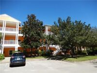 DISNEY/ORLANDO, FLORIDA - 3 BEDROOM CONDO in DAVENPORT!