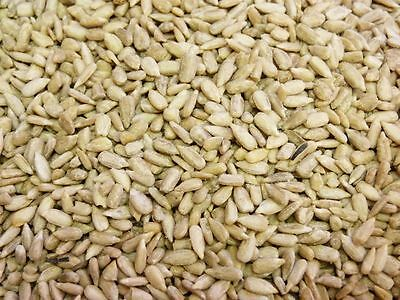 25KG Sunflower Hearts Bakery Grade Dehulled Kernels for Wild Bird Food FREEPOST